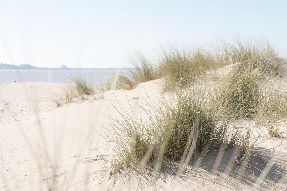 adolfo serra playa